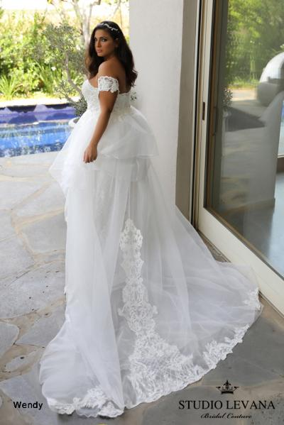 Plus size wedding gowns 2018 Wendy (1)